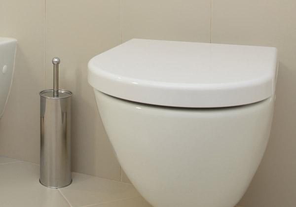 Een Toilet Wc Laten Plaatsen In En Om Rotterdam Hillegersberg